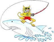 Wildcat Motel and Fishing Charters